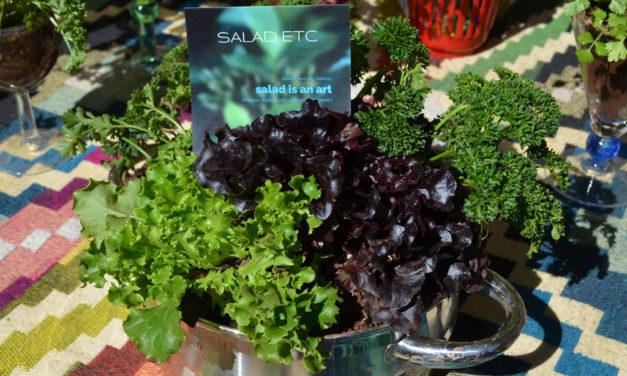 SALAD ETC by Nici Bailes