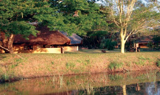 Bonamanzi Game Reserve, Hluhluwe