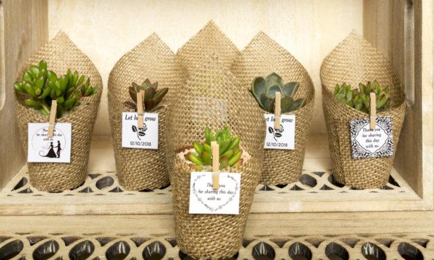 Potted gifts